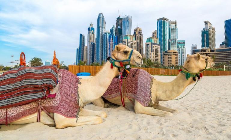 10 atracții turistice faimose în Emiratele Arabe Unite