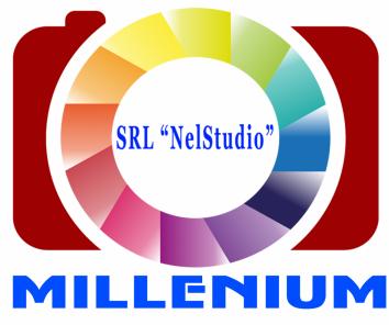 Компания SRL NelStudio