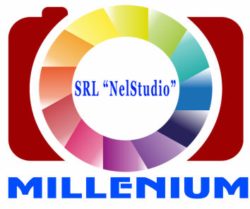 Companie SRL NelStudio