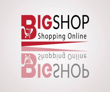 Companie Bigshop S.R.L.