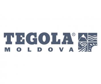 Companie Tegola Moldova