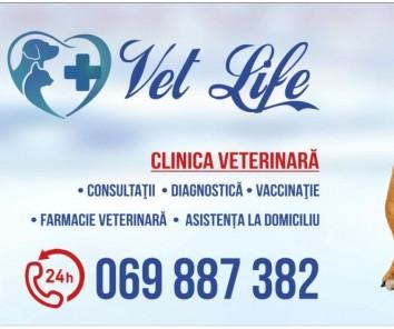 Компания Vet-Life