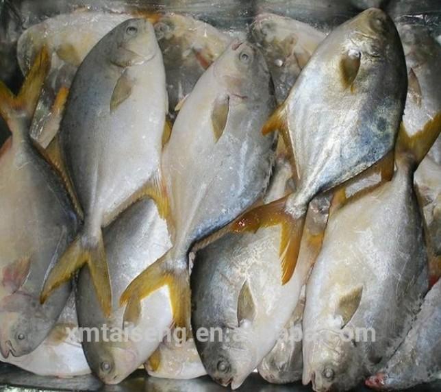 Muncitori la fabrica de prelucrare a peștelui