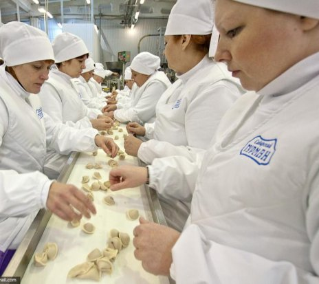 Ofertă - Работа в Польше - Фабрика полуфабрикатов (пицца, выпечка).
