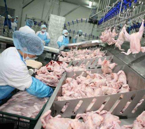 Ofertă - Angajăm personal necalificat pentru lucru la fabrica de produse alimentare.