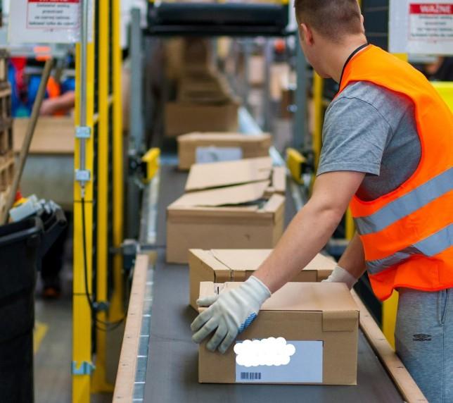 Operatori pregătire comenzi la depozite. Germania