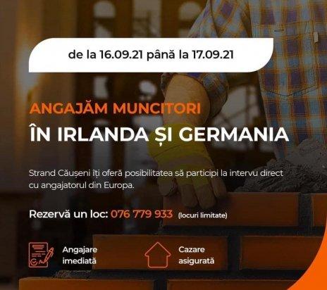Ofertă - Specialisti zidari-pietrari in Irlanda.Salarii de la 2500 euro.
